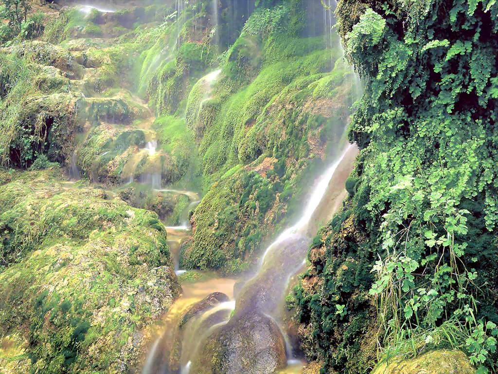 Nature Desktop - Natuur Wallpaper - Pictures