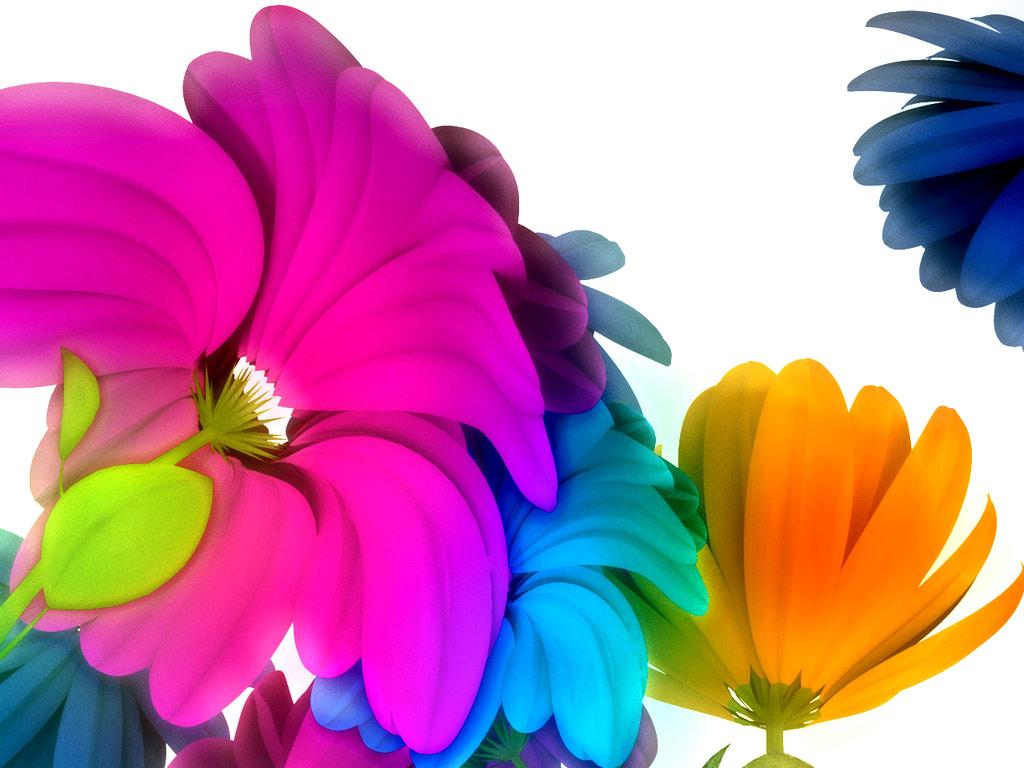 Flower language  love messages  floral symbolism and